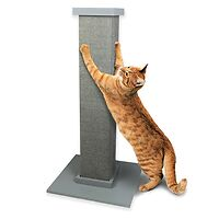 The Ultimate Scratching Post Grey